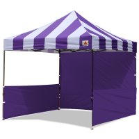 AbcCanopy Carnival 3x3 Purple With Purple Walls Pop Up Tent Trade Show Booth Canopy W/ Wheeled bag